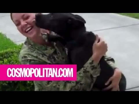 Soldiers Reunite With Their Dogs | Cosmopolitan