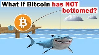 If Bitcoin Has NOT Bottomed, Here's What Could Happen Next