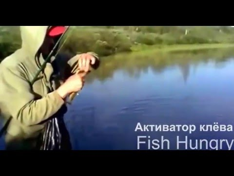 активатор клева fishhungry из чего состоит
