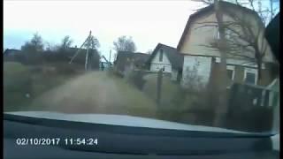 Пришлось убегать от лошади с цепью