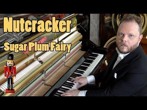 Nutcracker - Dance of the Sugar Plum Fairy - Tchaikovsky Vídeos de zueiras e brincadeiras: zuera, video clips, brincadeiras, pegadinhas, lançamentos, vídeos, sustos