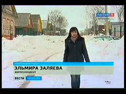 Снежные блохи в Татарстане (село Мамашир).mp4