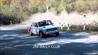 SOROKIN RALLY TEAM 2015