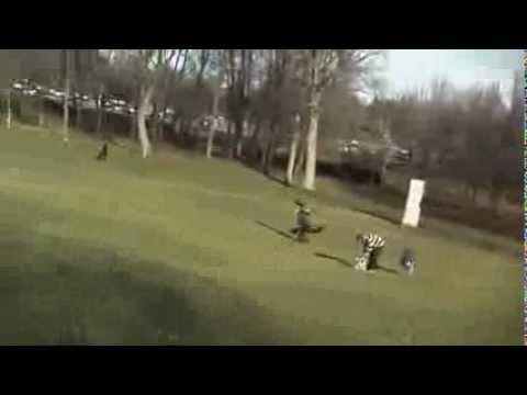 Aguila se lleba niño como presa INSOLITO -Video SORPRENDENTE!!!!!