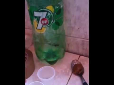 Veneno casero para eliminar hormigas de casa - Remedios caseros para eliminar hormigas en casa ...