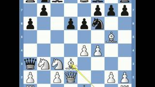 Match of the Century Spassky vs Fischer Game 11