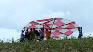 20 ft. kite