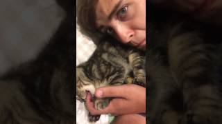 Cute Cat Nibbles on Owner's Fingers