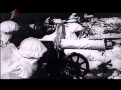 Автоматические и самозарядные винтовки предвоенной поры. Оружие ХХ века