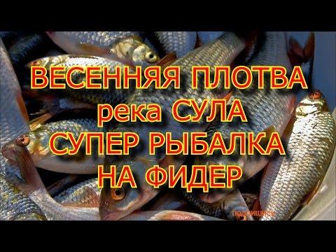 рыбалка на фидер от михалыча