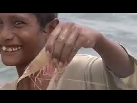 Catching Prawns in India - Ray Mears Extreme Survival - BBC