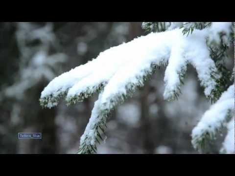 Enya - Enya - And Winter Came ...