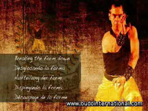 iniciacion judo formato dvd: