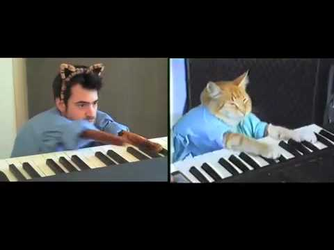 Keyboard Cat vs. Ron Livingston