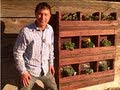 Build a Hanging Vertical Pallet Garden to Grow Food on Walls