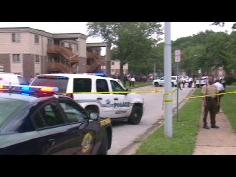The unknowns of the Michael Brown case