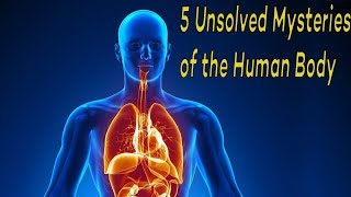5 Mysteries of the Human Body Science STILL Can