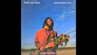 Watch Tears For Fears Schrodingers Cat video