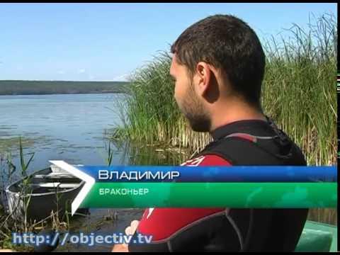 сезон ловли раков в ростовской области