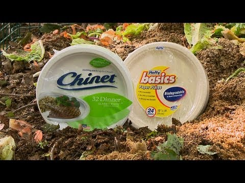 Biodegradable paper plates | Consumer Reports