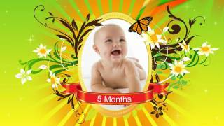 After Effects Project Files   Baby Gallery   VideoHive