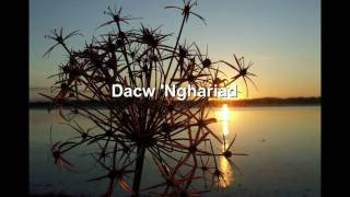 Eve Goodman - Dacw 'Nghariad [Welsh folk song]