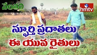 Natural Farming | Software Engineer Bhaskar Turns Farmer | Nela Talli  | hmtv