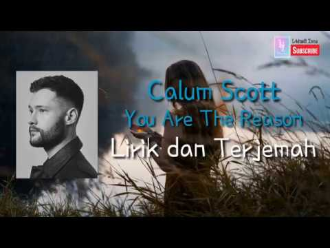 Calum Scott - You Are The Reason Lirik Dan Terjemah