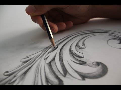 Visual Art - Acanthus Leaf - Speed Drawing