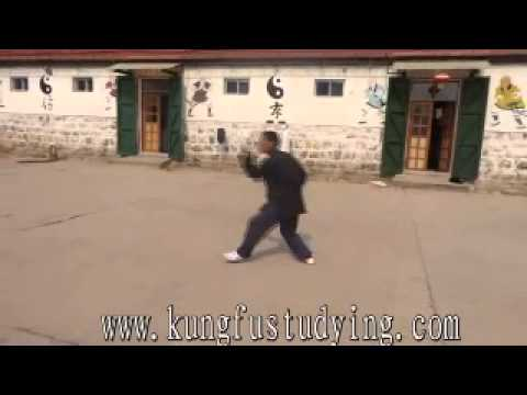 Xing Yi Kung Fu Showing by Da Wang Sifu ------ www.kungfustudying.com Image 1