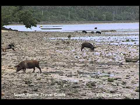Tonga Cultural Ecology