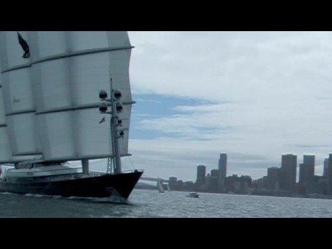 Maltese Falcon on the Bay