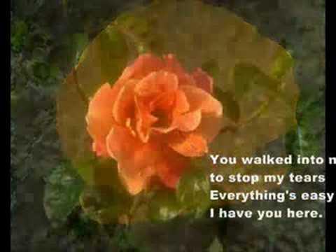 Julio Iglesias - When You Tell Me That You Love Me - Julio Iglesias