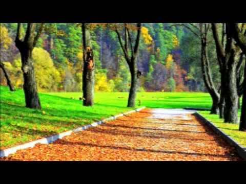 Песня о настоящей любви  - Осенний дождь