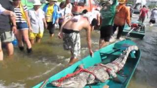 Shock khung la - Hai hung canh ca sau song chuong boi tu do o Thai Lan