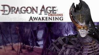 Прохождение Dragon Age Origins Awakening Серия 2