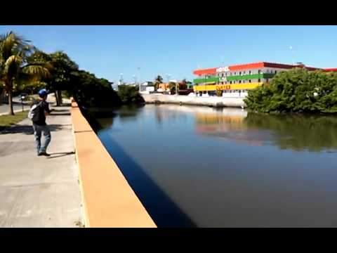 Fly fishing Urbano