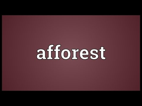 Header of afforest