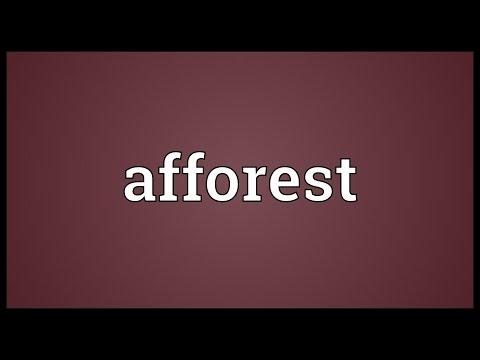 Header of afforest