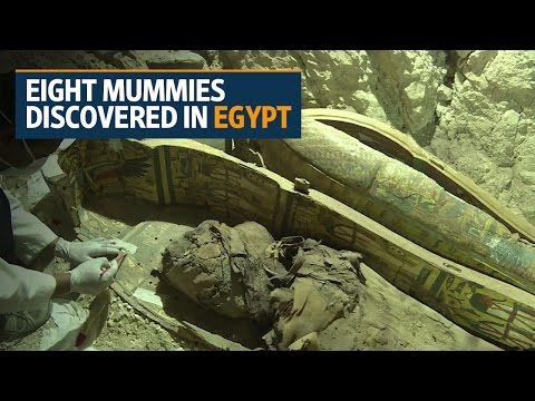 Eight mummies discovered in ancient tomb near Egypt's Luxor