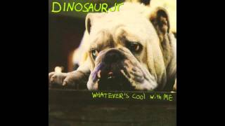 Dinosaur Jr. - Whatever