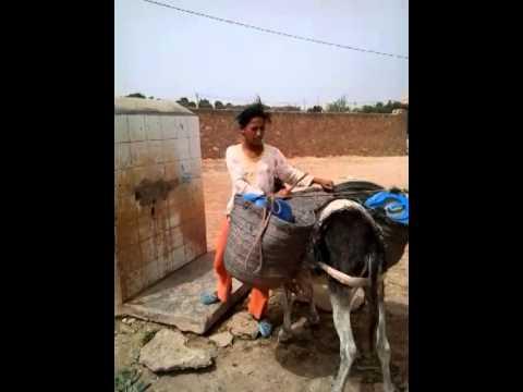 دوار أيت احماد التابع لبلدية الحنشان:أطفال عطشى ومسؤولون في سبات