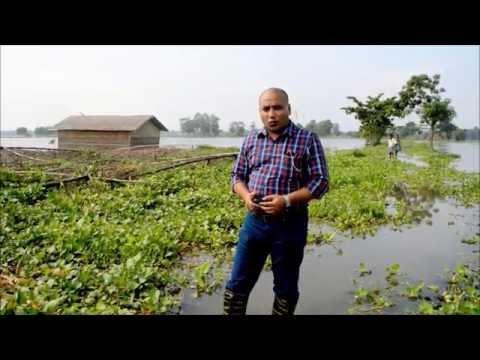 Assam Floods 2015: A trail of devastation