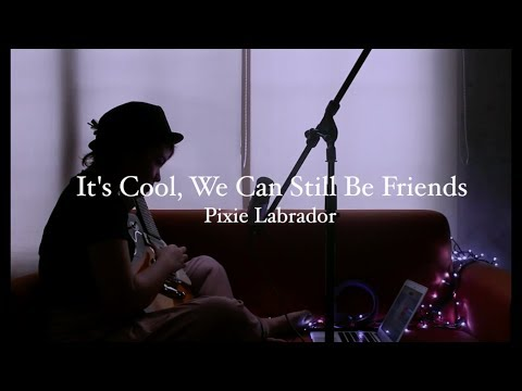 Bright Eyes - It's Cool, We Can Still Be Friends (Cover) | Pixie Labrador