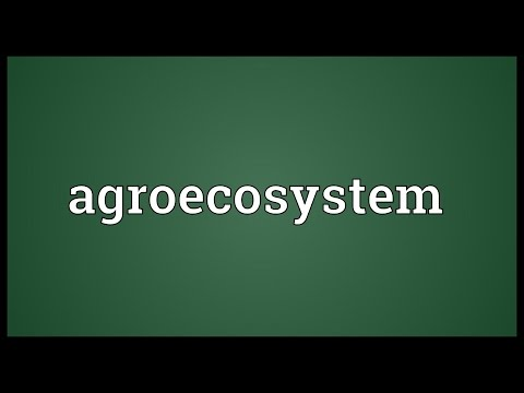 Header of Agroecosystem