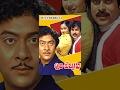 Puli Bebbuli   Telugu Full Movie
