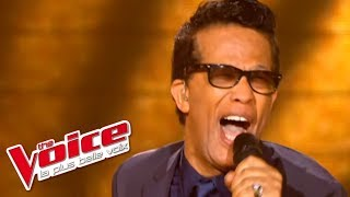 The Blues Brothers Soul Man Vigon The Voice France 2012 Prime 3