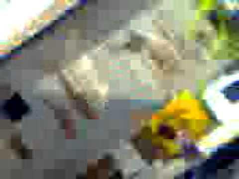 Badi Naxahaa video