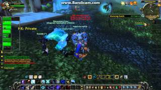 wow pvp hunter 5.0.4