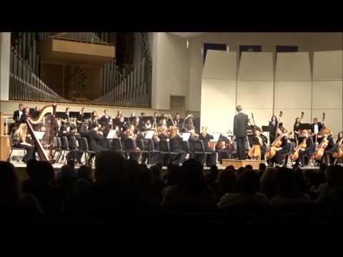 symphony orchestra essay